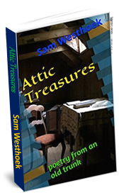 Attic Cover in 3D