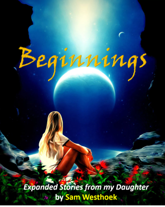 Beginnings - NaNoWriMo cover